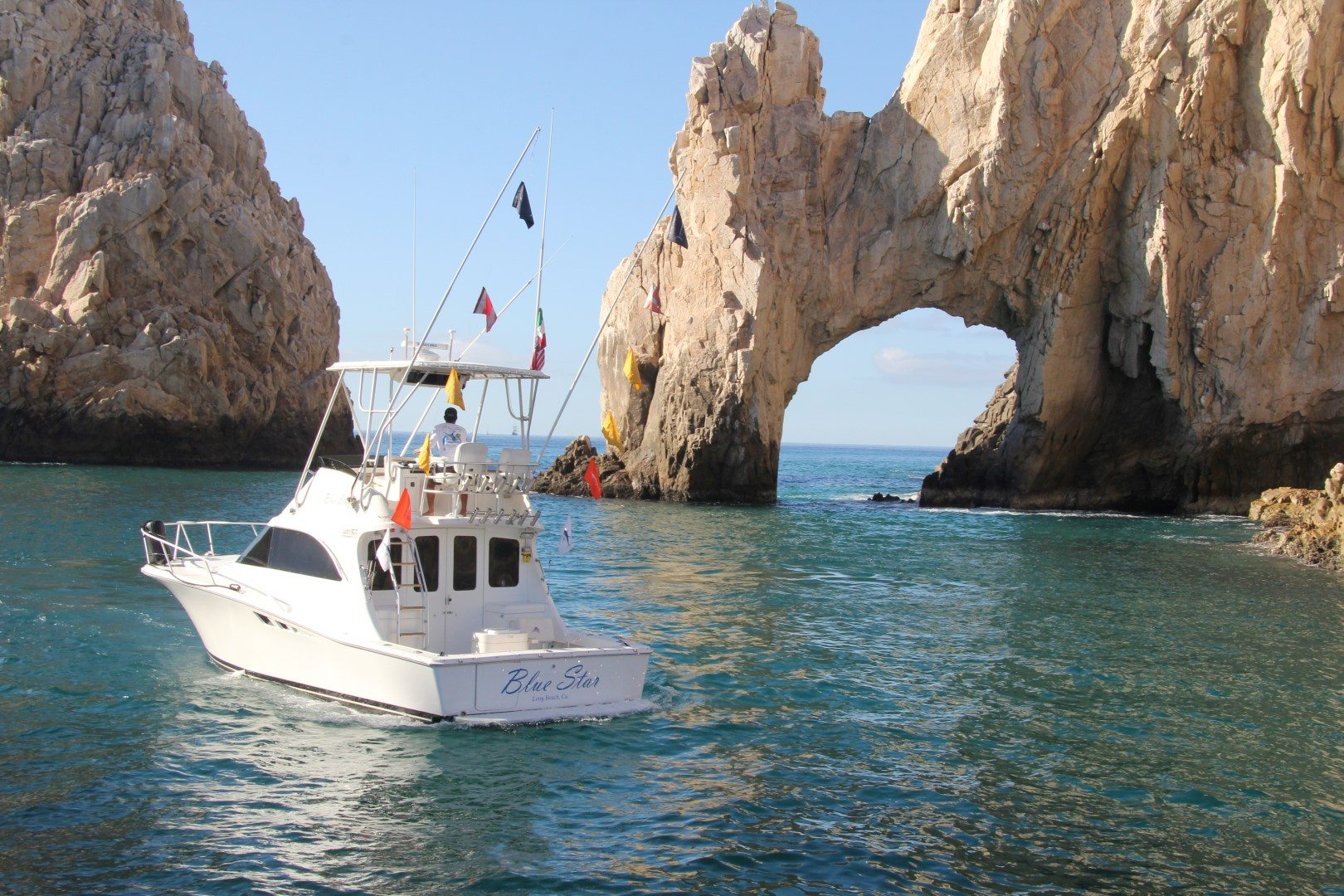 Cabo fishing cabo san lucas for Fishing cabo san lucas