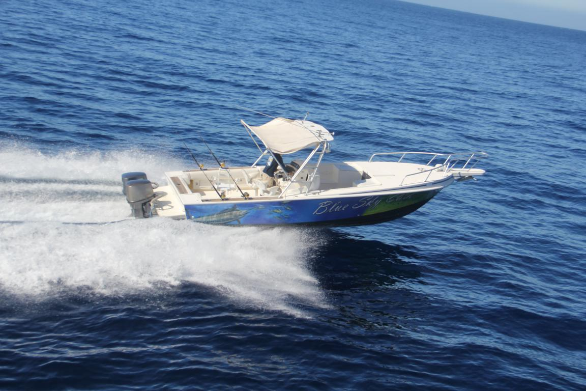 Blue Marlin 31 Foot Intrepid